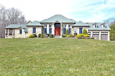 East Greenwich Single Family Home For Sale: 375 Shippee Rd