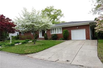 Single Family Home For Sale: 17 Birchtree Dr