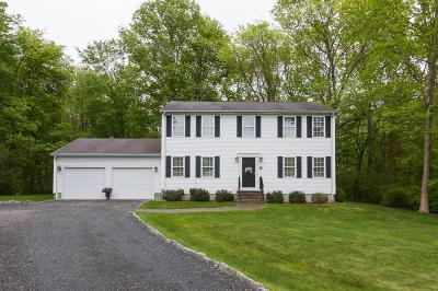 Kent County Single Family Home For Sale: 28 Brookfield Dr