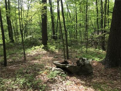 Glocester Residential Lots & Land For Sale: 00 Evans Rd
