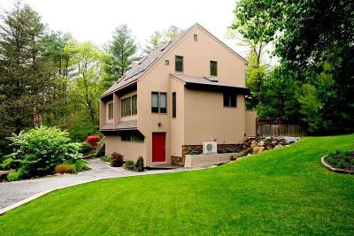 Kent County Single Family Home For Sale: 216 Mile Rd