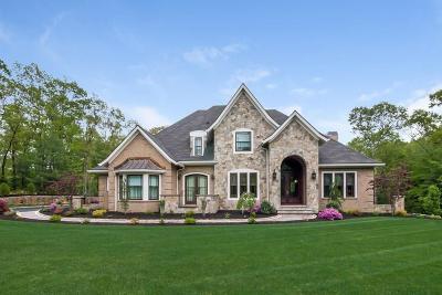 Kent County Single Family Home For Sale: 20 Secret Lane