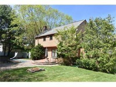 Lincoln Single Family Home For Sale: 180 N Old River Rd S