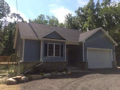 Glocester Single Family Home For Sale: 850 Chestnut Hill Rd