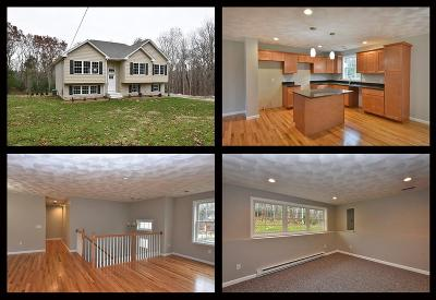 Foster Single Family Home For Sale: 56 North Rd