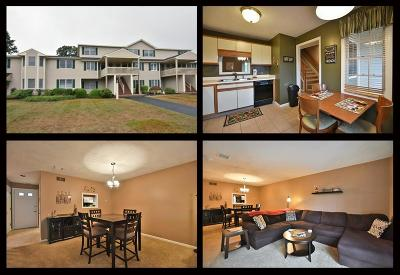 Kent County Condo/Townhouse For Sale: 85 Scenic Dr