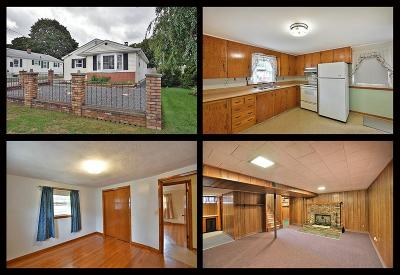 Providence County Single Family Home For Sale: 25 Flint St