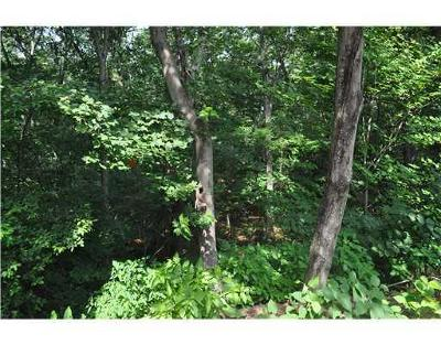 Burrillville Residential Lots & Land For Sale: 0 Log Rd