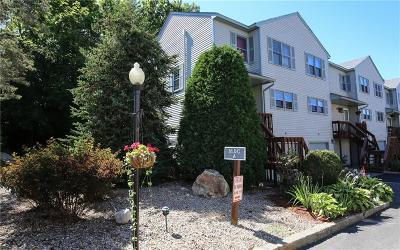 Johnston Condo/Townhouse For Sale: 1603 Plainfield Pike, Unit##a-1 #A-1