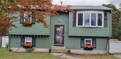 Kent County Single Family Home For Sale: 14 Gateway Ct