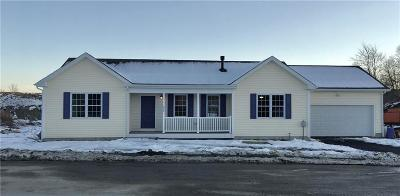 Woonsocket Single Family Home For Sale: 252 Danielle Dr