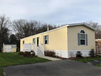 Attleboro Single Family Home For Sale: 71 Such Dr