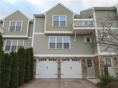 Providence County Condo/Townhouse For Sale: 161 Graniteville Rd