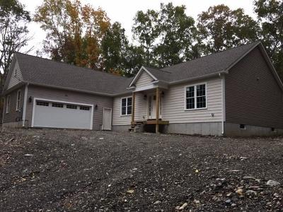 Lincoln Single Family Home For Sale: 283 Old River Rd