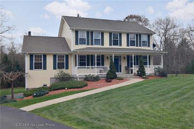 Providence County Single Family Home For Sale: 29 D'amico Lane
