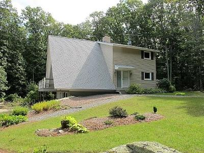 Providence County Single Family Home For Sale: 105 Quaker Lane