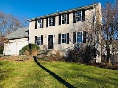 Providence County Single Family Home For Sale: 26 Brookdale St