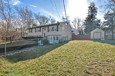 Swansea Single Family Home For Sale: 19 Pleasant St