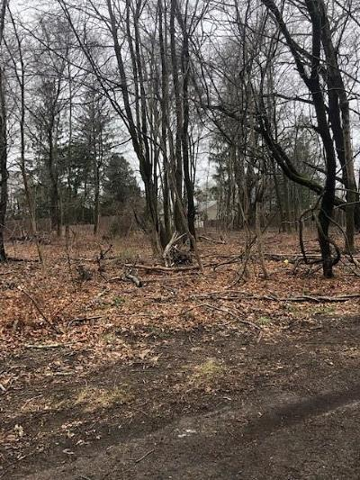 Hopkinton RI Residential Lots & Land For Sale: $75,000