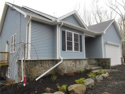 Providence County Single Family Home For Sale: 850 Chestnut Hill Rd