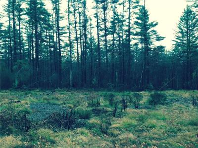 South Kingstown RI Residential Lots & Land For Sale: $125,000