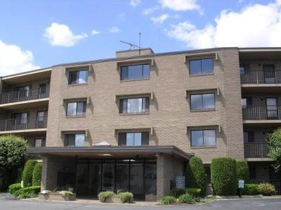 West Warwick Condo/Townhouse For Sale: 650 East Greenwich Av, Unit#202 #202