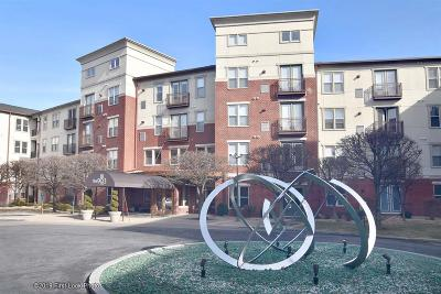 Providence Condo/Townhouse For Sale: 1000 Providence Pl, Unit#464 #464