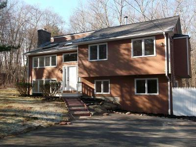 Coventry Single Family Home For Sale: 123 Hammet Rd