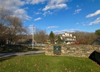 Washington County Condo/Townhouse For Sale: 7 Pendleton Pl