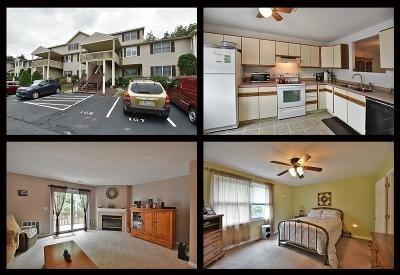 West Warwick Condo/Townhouse For Sale: 107 Scenic Dr, Unit#107 #107