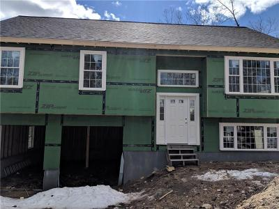 Glocester Single Family Home For Sale: 282 Lake Dr