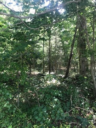 Hopkinton RI Residential Lots & Land Act Und Contract: $85,500