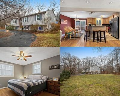 Kent County Single Family Home For Sale: 975 Whaley Hollow Rd