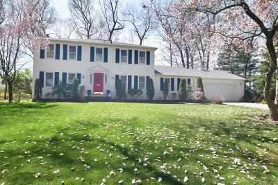 Kent County Single Family Home For Sale: 445 Red Chimney Dr