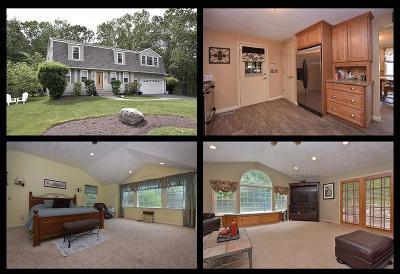 Warwick Single Family Home For Sale: 111 Greenbush Rd
