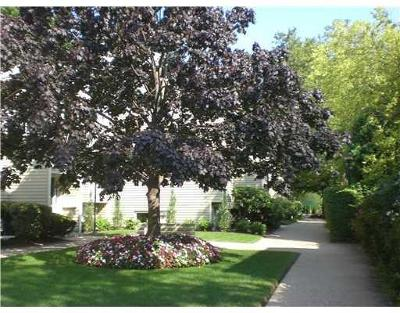Providence Condo/Townhouse For Sale: 388 S Main St, Unit#67 #67