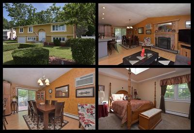 North Providence Single Family Home For Sale: 27 Sherri Dr