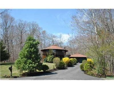 Exeter Single Family Home For Sale: 123 Beechwood Hill Trl