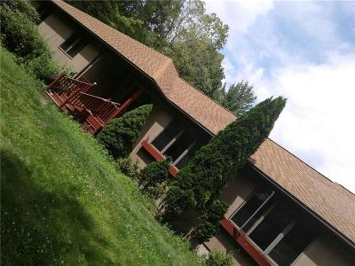 Single Family Home For Sale: 1535 Snake Hill Rd