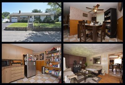 Providence County Single Family Home For Sale: 20 Richardson Dr