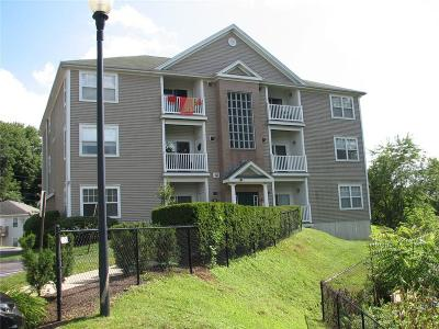 Woonsocket Condo/Townhouse For Sale: 78 Mill St, Unit#204 #204