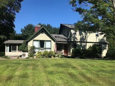 Kent County Single Family Home For Sale: 318 Town Farm Rd