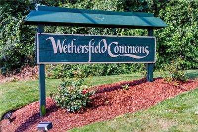 Kent County Condo/Townhouse For Sale: 814 Williamsburg Cir