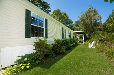 Kent County Single Family Home For Sale: 1 Blueberry Heights