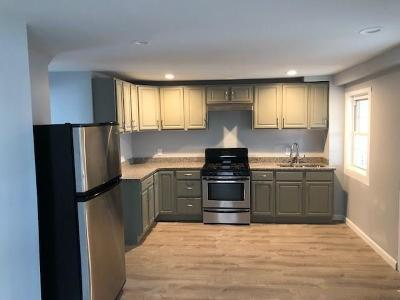North Providence Multi Family Home For Sale: 9 Greystone Avenue