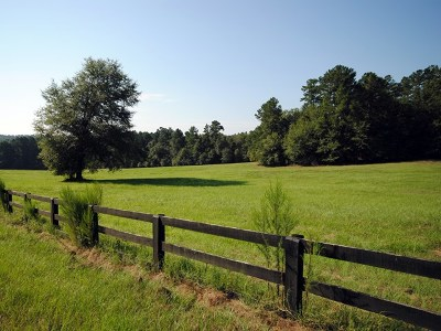 Aiken Residential Lots & Land For Sale: 566 Anderson Pond Road
