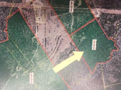 Aiken Residential Lots & Land For Sale: 129 Nautilus St