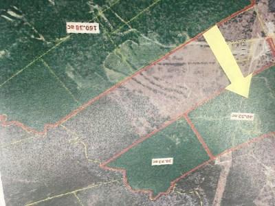 Aiken Residential Lots & Land For Sale: 129 Nautilus