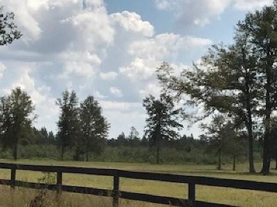 Aiken County Residential Lots & Land For Sale: 1604 Oak Ridge Club