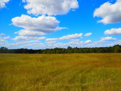 Aiken County Residential Lots & Land For Sale: 416 Shadow Lane Road